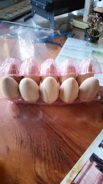 卵1.jpg